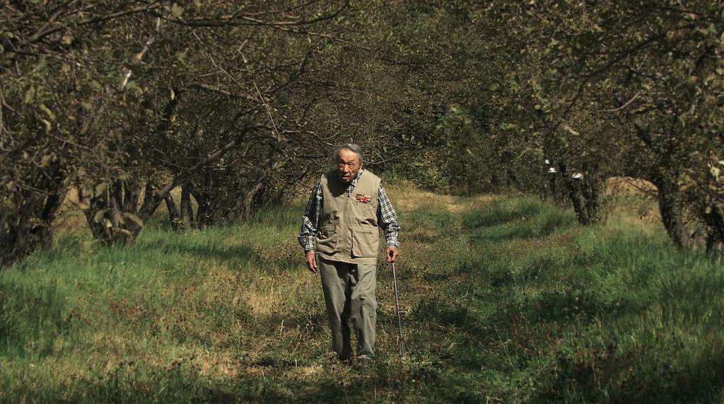 Aymak Djangaliev nell'imponente viale di Malus sieversii del suo conservatorio, nel centro di fito-introduzione del giardino botanico di Almaty, durante le riprese del documentario di Catherine Peix, 2 settembre 2006. Il conservatorio è stato distrutto nel 2012, da un incendio doloso (fotografia tratta dal documentario di Catherine Peix).